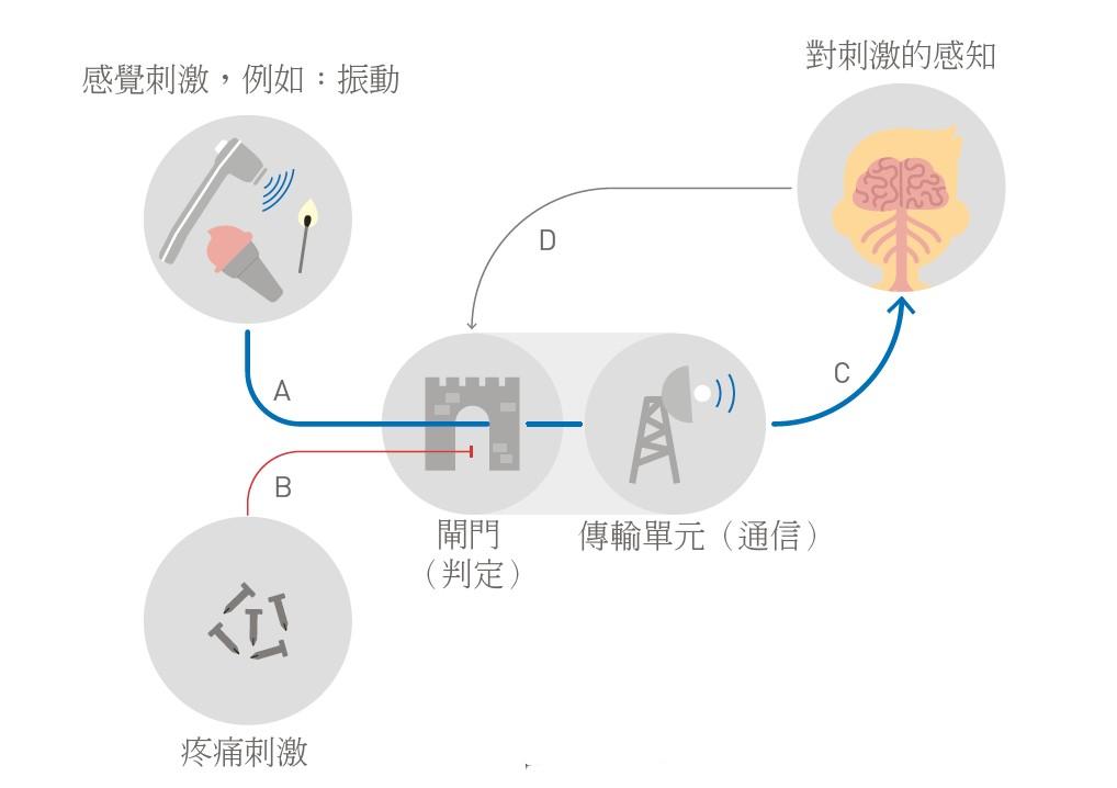 門控理論 Gate Control
